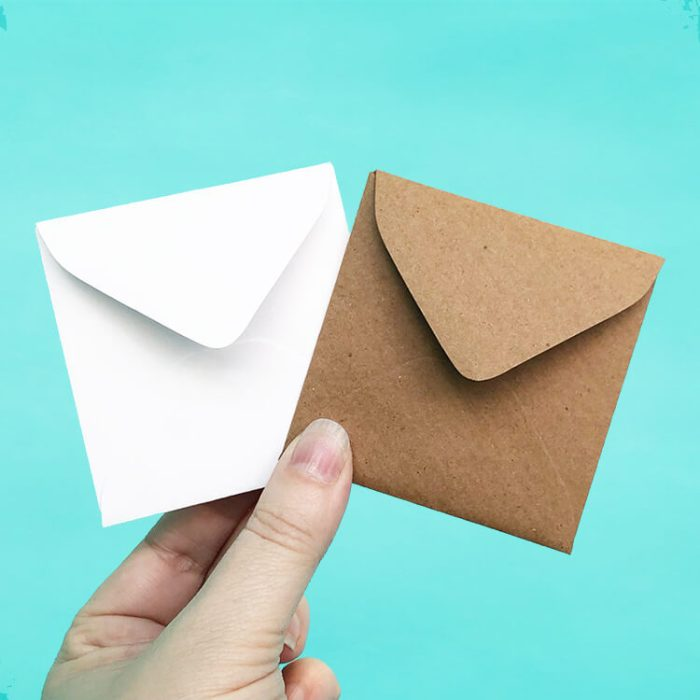 Kraft and White Vellum Mini Envelopes