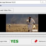 Easy Video Logo Remover Crack Patch Keygen Serial Key