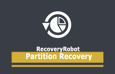 RecoveryRobot Partition Recovery Business Crack