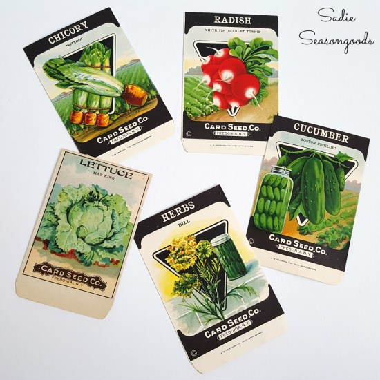 Vintage seed packets to be upcycled into vegetable art or decor for a country kitchen or garden kitchen by Sadie Seasongoods / www.sadieseasongoods.com