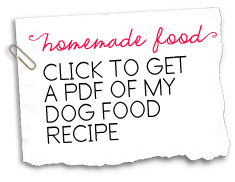 Click-to-get-a-PDF-of-my-homemade-dog-food-recipe