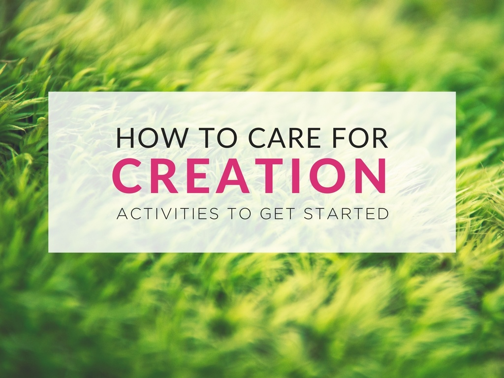 Caring For Creation 8 Printable Resources To Use With