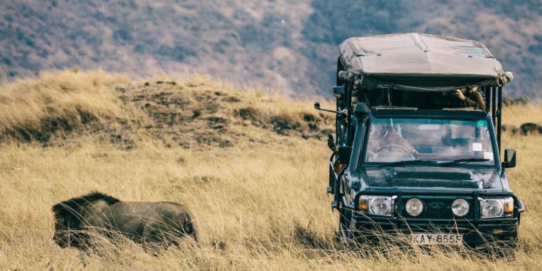 Masai Mara – The Ultimate Destination Wild!