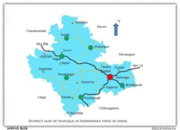 Travel guide to Agumbe_SAEVUS BLOG