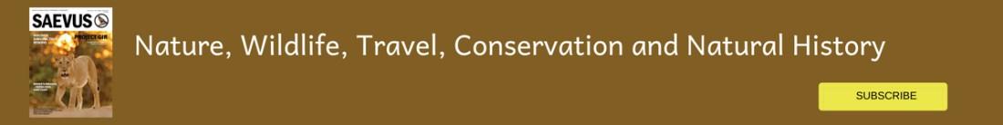 Cutting edge conservation