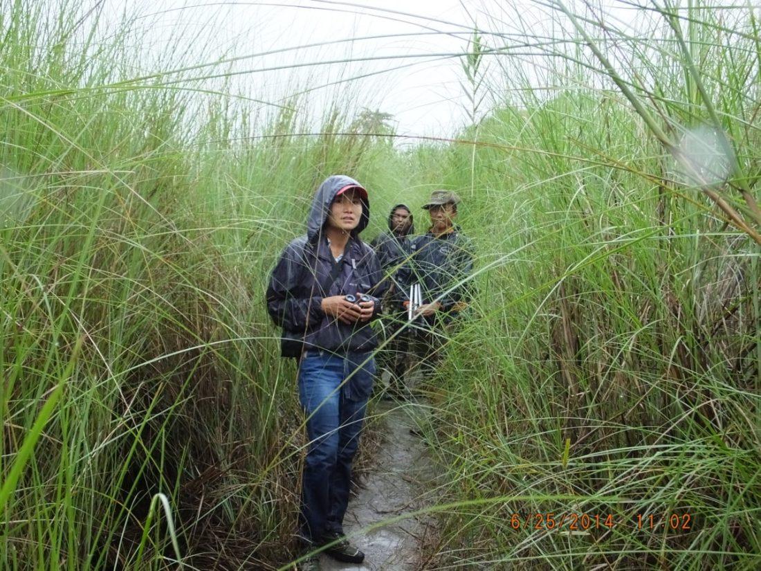 Bird survey teams in Hukaung Valley Wildlife Sanctuary