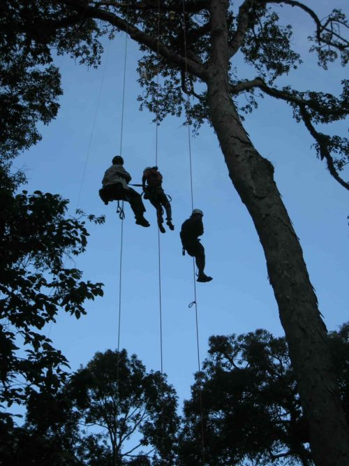 Indian students learning how to access the canopy at KMTR. | Photo: Meg Lowman