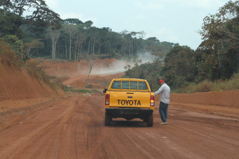 In the Congo Basin, a road cuts through once-untouched ape wilderness