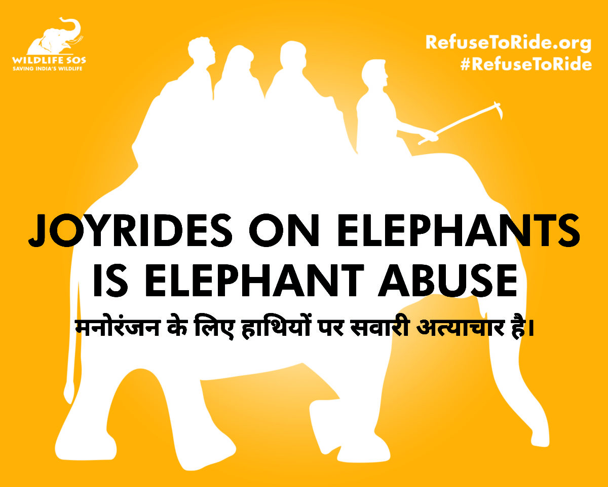 Refuse to Ride – a campaign for change