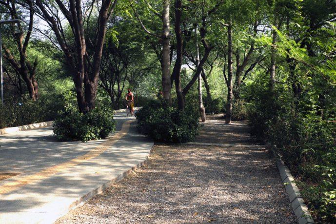 In Conversation with Latika Thukral, Gurgaon's Environmental Warrior
