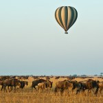 Balloon safari passengers must ensure that they are fit to fly, not suffering from any significant medical condition, and that they have not undergone any recent surgeries