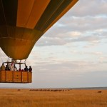 Safari balloons have a 'cockpit' for the pilot and 4 compartments for the passengers