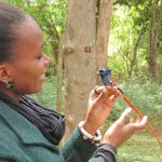 https://conservationatheart.wordpress.com/2016/03/23/avid-about-birds-kenya-bird-map-needs-you/
