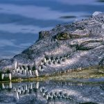 The start-up costs of a crocodile farm is very high