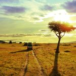 http://theworldhopper.com/kenya-travel-guide