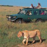 http://greatsafaris.com/kenya-adventure-safari/