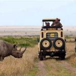 https://travel.jumia.com/blog/3-days-maasai-mara-safari-kenya-2245