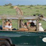 http://www.eaexoticsafaris.com/16-days-luxury-safari