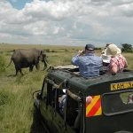 http://www.africaexpeditionsupport.com/package/flying-safari-ethiopia-victoria-falls/
