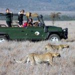 http://wild-wings-safaris.com/tours-and-safaris/kenyan-adventure-safari-7-days/