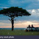 http://www.alamy.com/stock-photo-kenya-masai-mara-a-pause-for-a-sundowner-beneath-a-balanites-tree-30746412.html