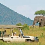 http://www.pandasafaris.com/safaris-itineraries/kenya-safaris/3-days-maasai-mara-game-reserve-safari/