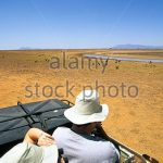 http://www.alamy.com/stock-photo/game-drive-kenya-van.html