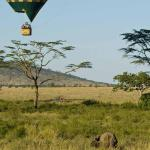 http://www.zicasso.com/luxury-vacation-kenya-tours/iconic-amboseli-and-masai-mara-safari