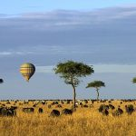 http://www.dailymail.co.uk/travel/article-2619878/I-hat-Kenya-Royal-milliner-Philip-Treacy-bowled-Africas-spectacular-vistas.html