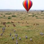 http://www.exploringtourism.com/kenya-sightseeing-and-activities/