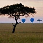 http://www.heritage-eastafrica.com/tented-camps/mara-intrepids/