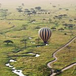 https://lvs.luxury/destination/serengeti/