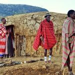 Maasai families live in enclosures called Enkang which contains ten to twenty small huts