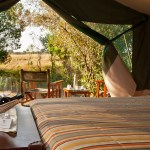 Traditional tented camps are famous for its Maasai cultural experience