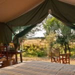 Tented camp delivers exclusive safaris for adventurous families and couples
