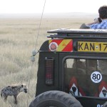 Self-drive safaris are permitted provided you are familiar with the regulations and rules of the National Reserve