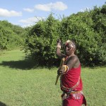 There are about 900.000 Maasais in Kenya
