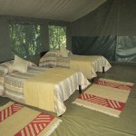 Game reserve in Kenya offer a culturally enriching pastoral getaway
