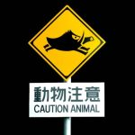 Beware of warthog.