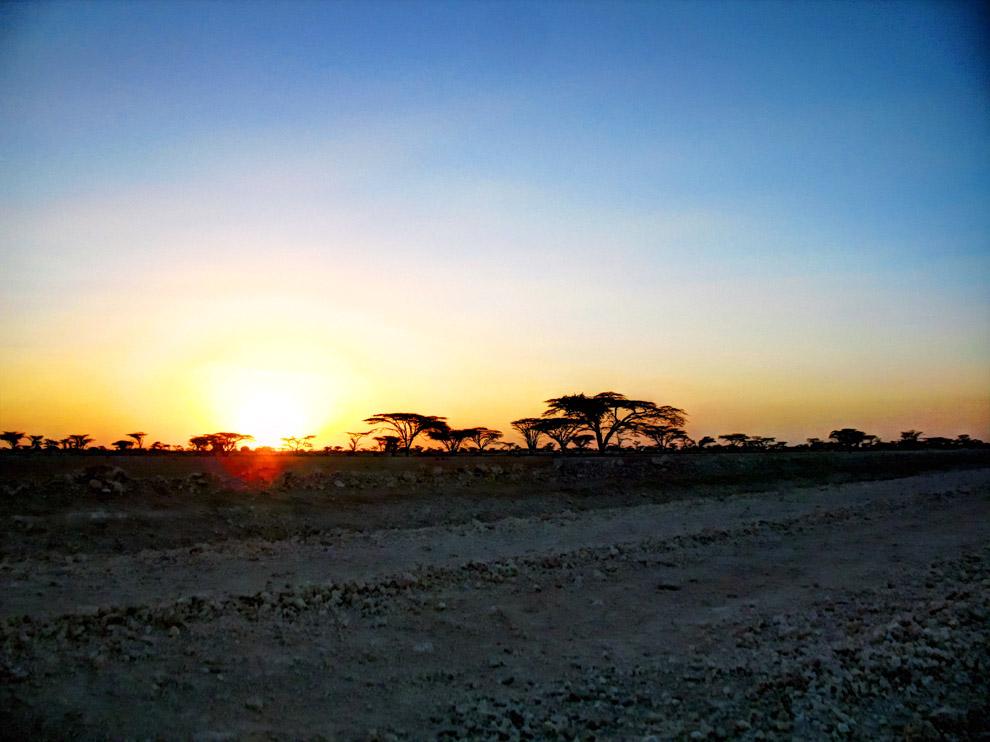 Chalbi Desert_Desert road
