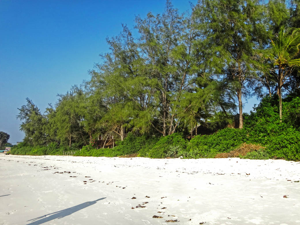 Watamu beach_sugar white sands4