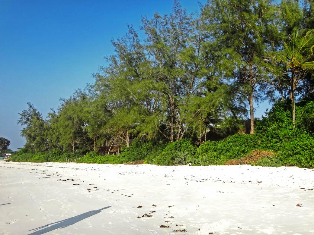 Watamu beach_sugar white sands4