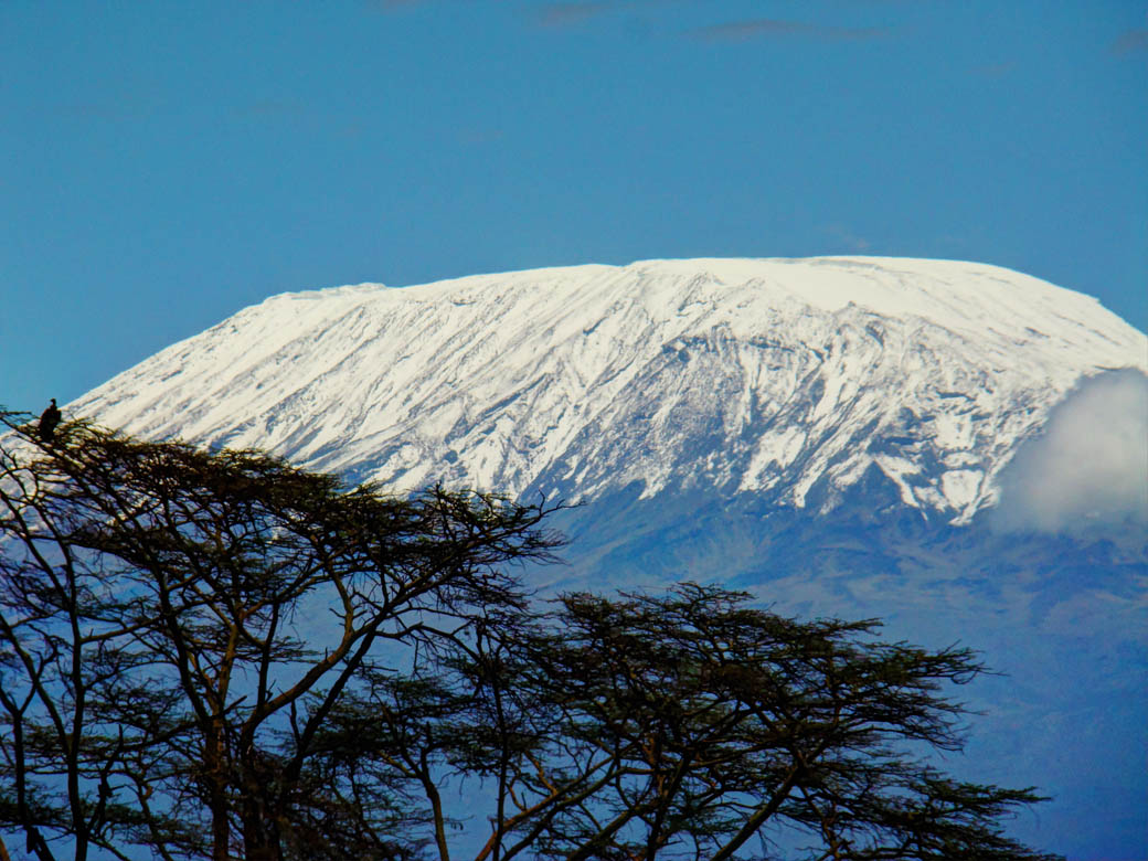 Amboseli National Park_Kilimanjaro snow cap2