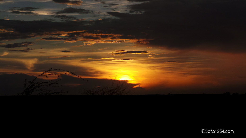 Northern Kenya_chalbi desert4