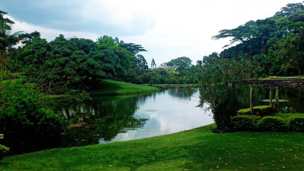 Kapsimotwa gardens_dam
