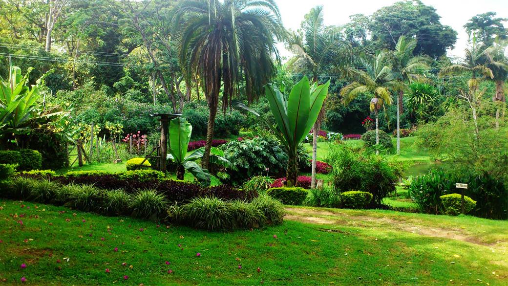 Kapsimotwa gardens_grounds3