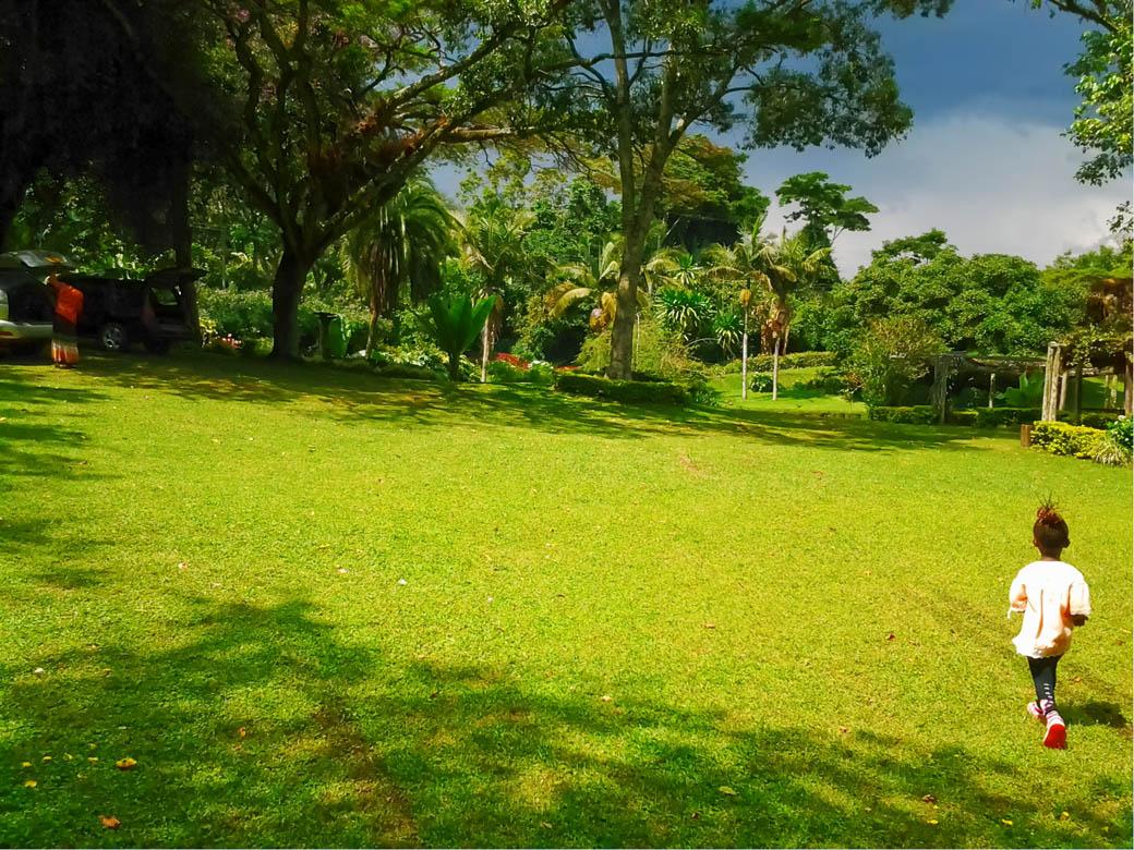 Kapsimotwa gardens_picnic site2
