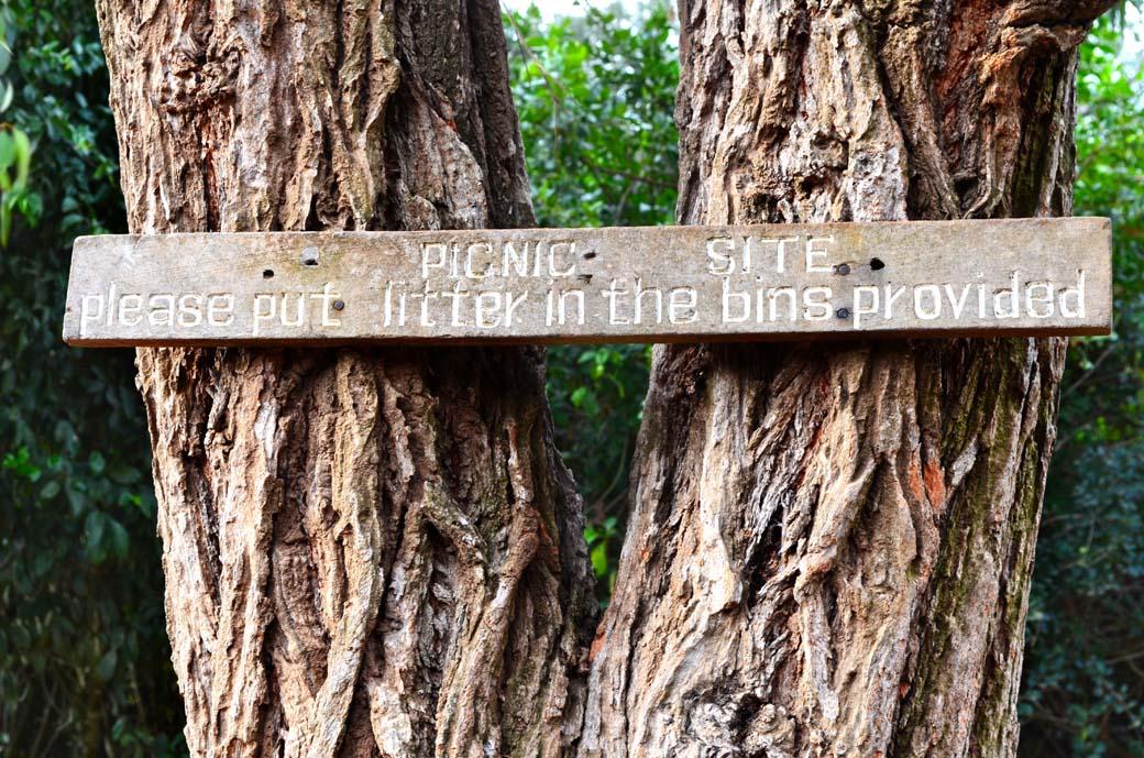 Oloolua Nature Trail_Picnic site1