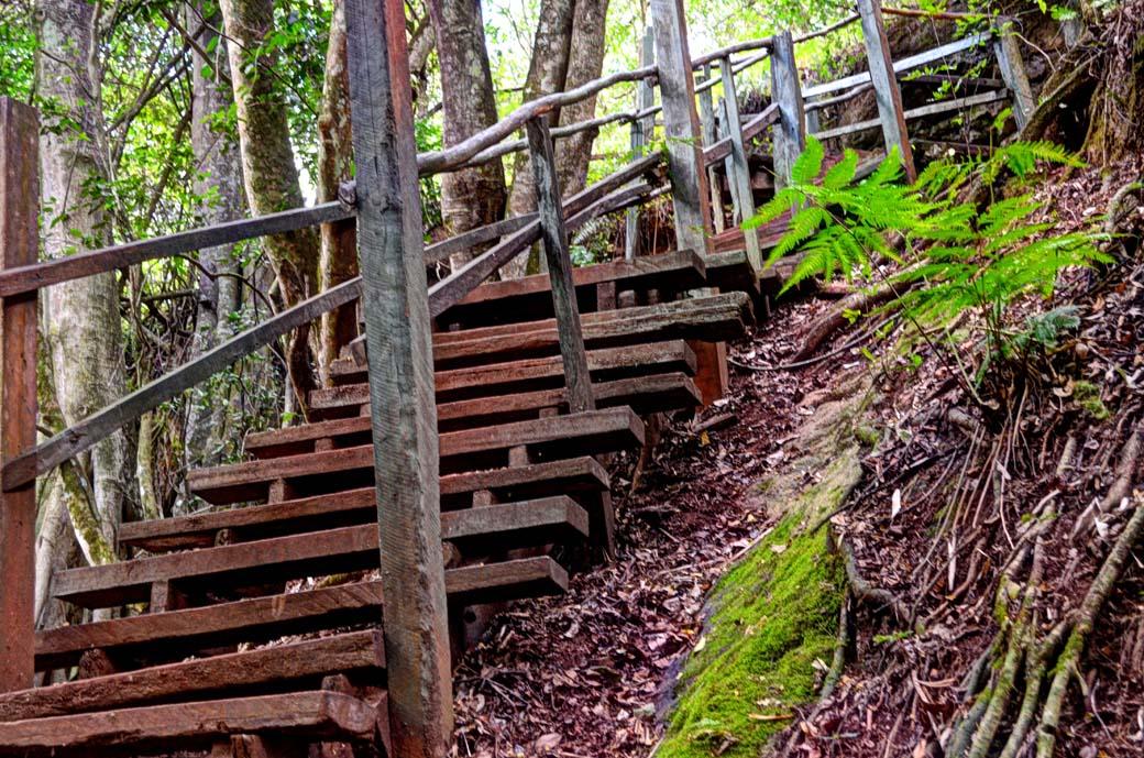 Oloolua Nature Trail_Walkaway2