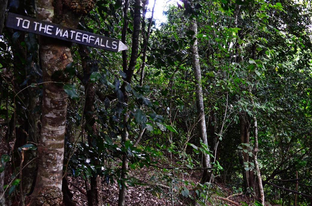Oloolua Nature Trail_Waterfall sign